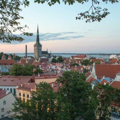 Viro kiinnostaa suomalaisia yrityksiä